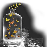 Volemos como mariposas lejos muy lejos